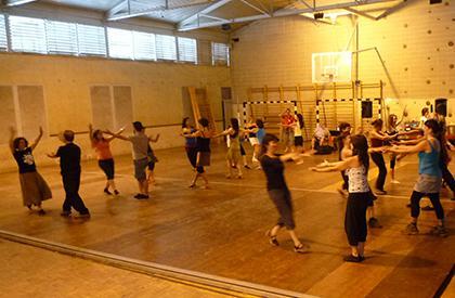 Programa d'impuls de les danses populars vives a l'ensenyament primari